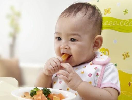 Cách kết hợp ăn dặm kiểu Nhật và BLW hiệu quả giúp bé ăn ngon miệng hơn